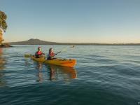 Kayaking in Hauraki Gulf