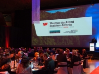 09.10.14.WestpacAklBusinessAwardsSouth_164 (2)
