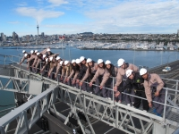 Students on an Auckland Bridge Climb