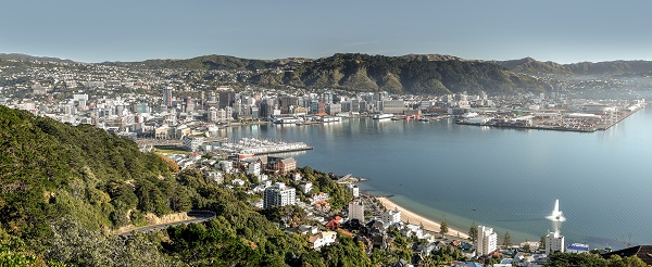 Wellington by Rob Suisted